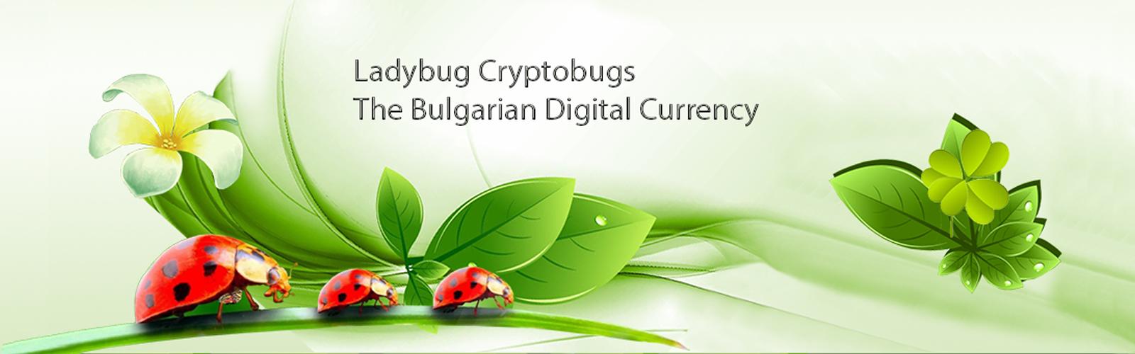 Ladybug cryptobugs